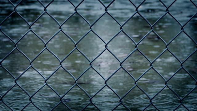 stängsel i regn - basketboll boll bildbanksvideor och videomaterial från bakom kulisserna