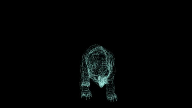wire frame animation of bear attack on black background