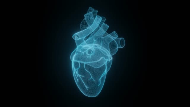 3d wireframe hjärtan göra isolerade vita bakgrunder, abstrakt hjärta ikon form linjer och trianglar, peka ansluta nätverk på blå bakgrund, 3d göra - människohuvud bildbanksvideor och videomaterial från bakom kulisserna