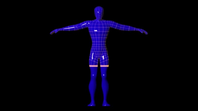 Wireframe human figure scanner down Wireframe human figure being scanned with a laser light. Cybersecurity and biometrics authentication concept. tech background wire frame model stock videos & royalty-free footage