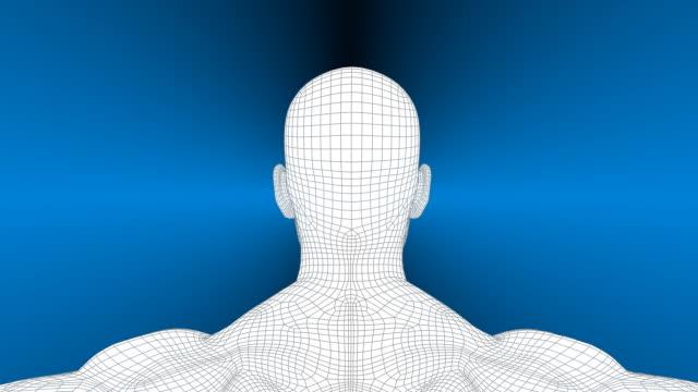 3 d uomo rotazione wireframe - rappresentazione umana video stock e b–roll