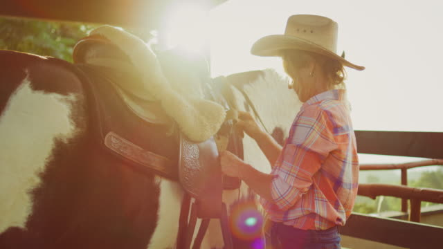 Woman Adjusting Saddle Woman adjusting saddle on her horse to go riding cowgirl stock videos & royalty-free footage