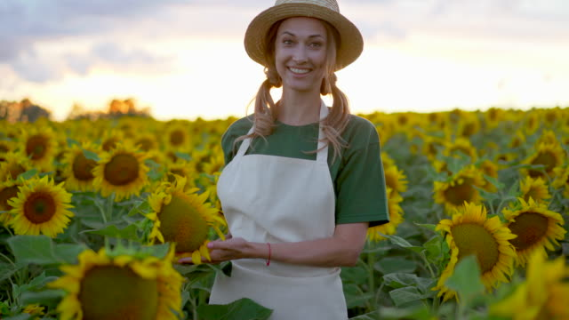 woman agronomist standing agricultural sunflower field caucasian female farmer straw hat portrait agribusiness worker - agricoltrice video stock e b–roll