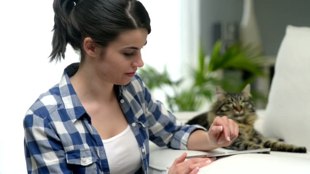女性と猫のリビングルーム - ネコ科点の映像素材/bロール