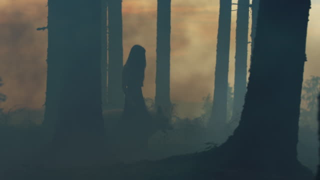 woman and dire wolf walking into the woods - lupo video stock e b–roll
