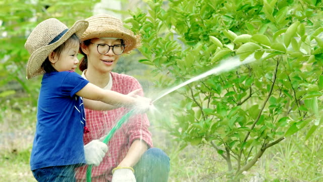 Woman and girl, Mother and Daughter watering a tree together - Vidéo