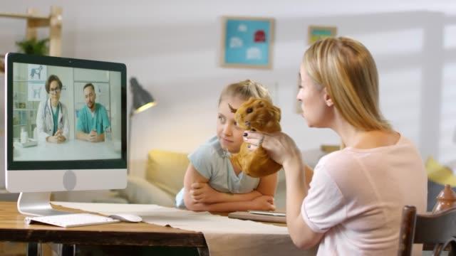 kvinna och flicka video calling vets om deras guinea pig - veterinär, undersökning bildbanksvideor och videomaterial från bakom kulisserna