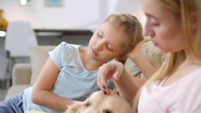 kvinna och flicka med sick dog consulting online vet - veterinär, undersökning bildbanksvideor och videomaterial från bakom kulisserna