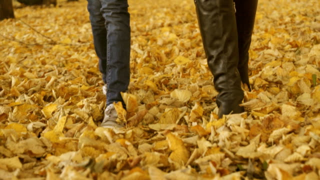 vídeos de stock, filmes e b-roll de mulher e menina andando sobre as folhas caídas de outono. - setembro amarelo