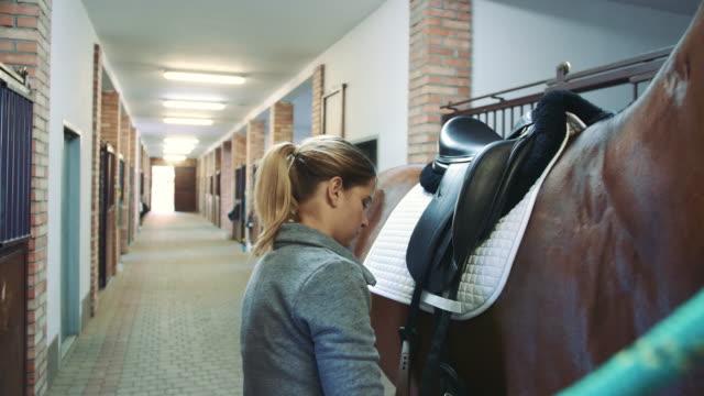 vidéos et rushes de femme organisant la selle sur le cheval dans l'écurie - dressage équestre