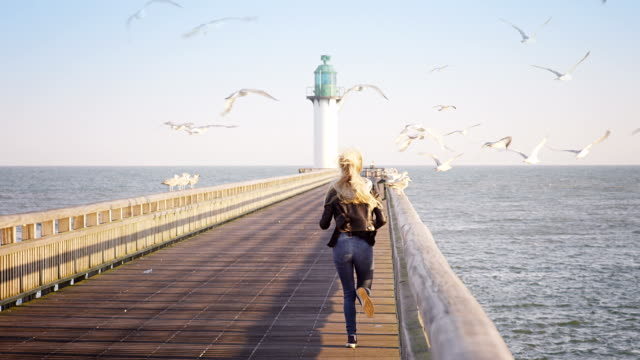 Woman at the ocean Selected Takes - Shot on RED Epic normandy stock videos & royalty-free footage