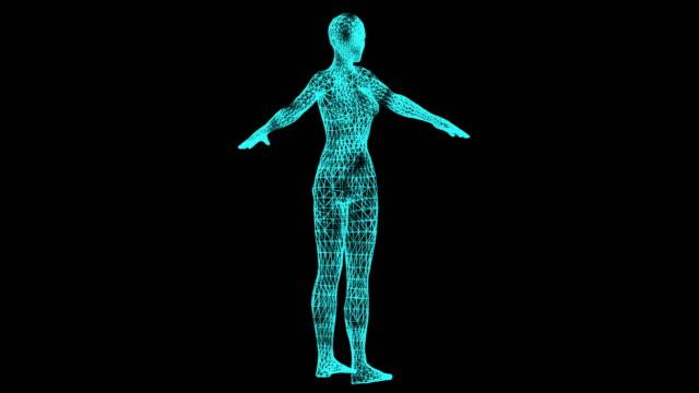 Woman body, Hologram effect, loop animation
