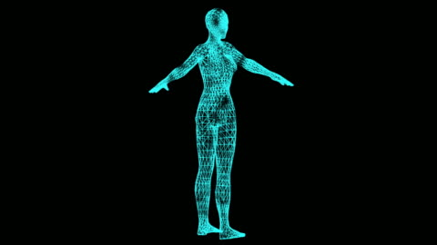 Woman body, Hologram effect, loop animation Woman body, Hologram effect, loop animation limb body part stock videos & royalty-free footage