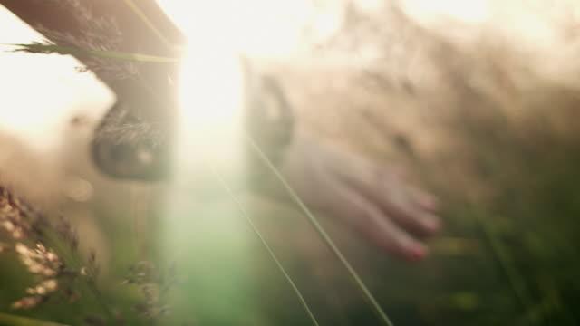 여자 솔질, 손으로 그라 - 풀 벼과 스톡 비디오 및 b-롤 화면