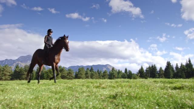 TS femme galop avec son cheval dans une prairie de montagne - Vidéo