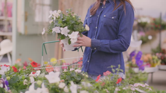 Woman carrying shopping basket while buying flower pot at shop