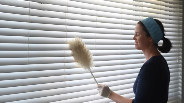 Woman cleaner cleaning dusting window blinds