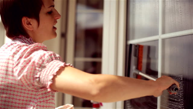 Woman cleaning big window at a sunny day. video