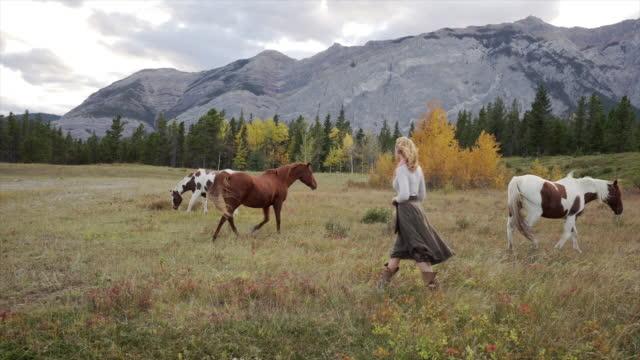 frau verbindet mit pferden in der bergwiese - eskapismus stock-videos und b-roll-filmmaterial