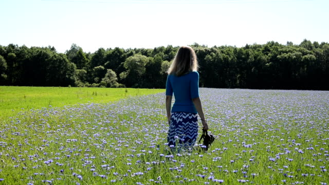 woman cornflower field video