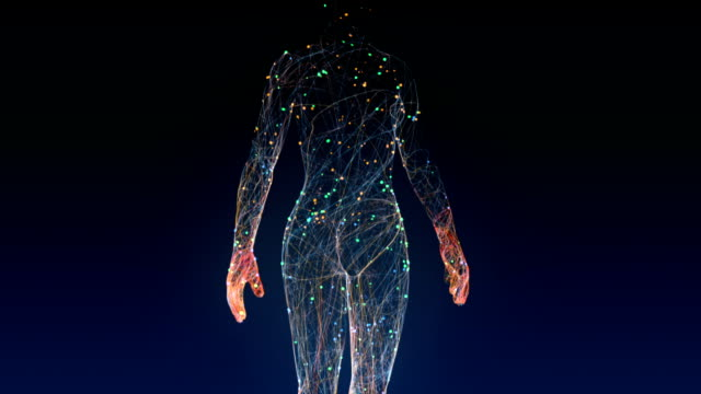 Woman creation Woman creation with particles (3d Animation - Dynamics) the human body stock videos & royalty-free footage