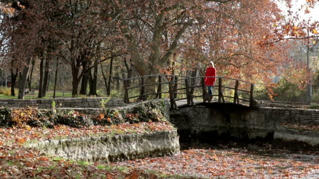 Mujer cruzando el puente de madera - vídeo