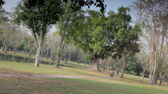 Woman Cycling Through A Park file_thumbview_approve.php?size=1&id=46158454 sukhothai stock videos & royalty-free footage