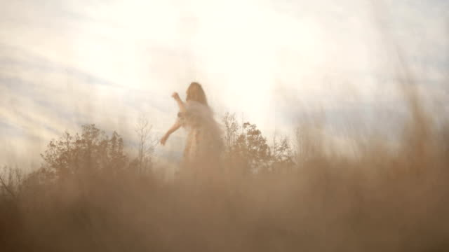 Woman dancing in the field video