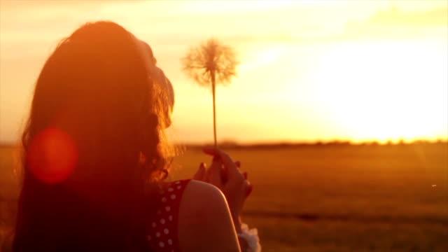 Woman Dandelion Summer Dream Field Sunset Dreams Concept video
