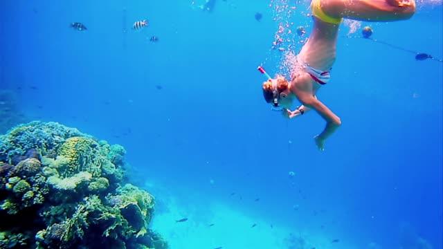 Woman dive underwater in snorkeling diving mask video