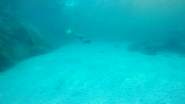 Woman dive underwater in snorkeling