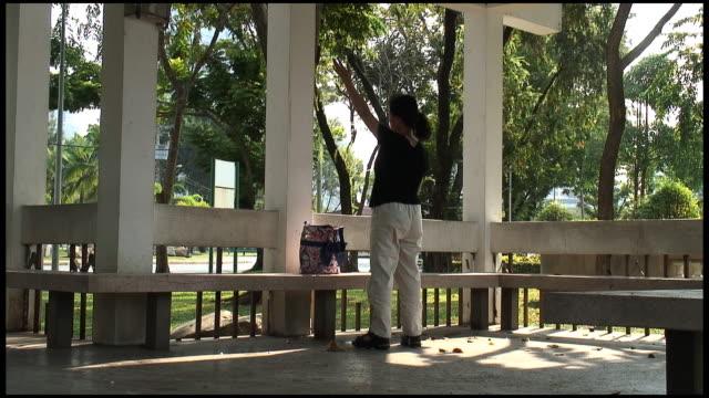 (HD1080) Woman Doing Qigong / Tai Chi in Park video