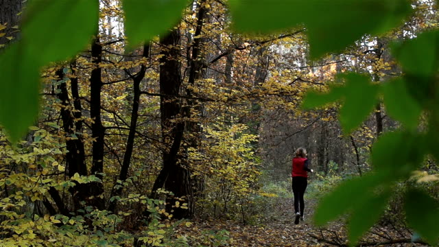 A woman doing sports in the forest. Enjoy running. video