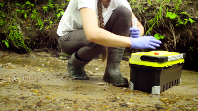 Woman ecologist taking samples of water Woman scientist environmentalist sitting near the creek. She opening a tool box, taking sample of water and pouring it into the test tube. duckweed stock videos & royalty-free footage