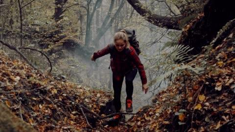 vidéos et rushes de femme explorant la zone de nature sauvage. forêt automnale - exploration