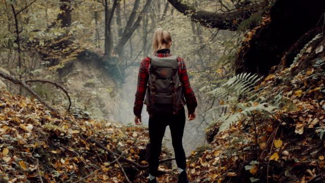woman exploring wilderness area. autumnal forest - дикая растительность стоковые видео и кадры b-roll