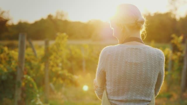 Woman farmer walking among the rows of a vineyard at sunset. Handheld shot video