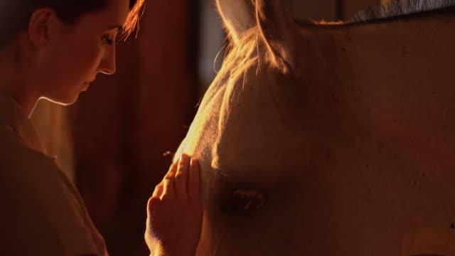 SLO Missouri femme donnant des friandises de son cheval de stabilité - Vidéo