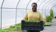 istock Woman greenhouse worker with plants crate 1201426064