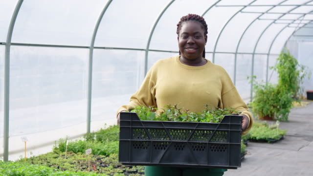 Woman greenhouse worker with plants crate