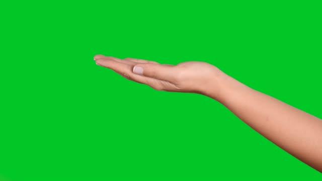 stockvideo's en b-roll-footage met 4k vrouw handgebaren op groen scherm - hand pointing