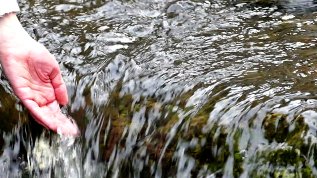 Woman hand in water clear mountain river video