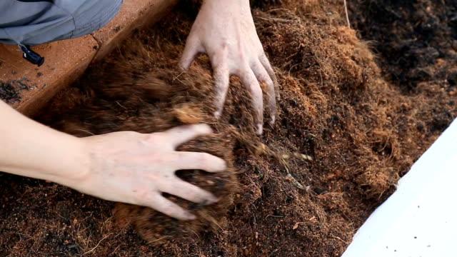 woman hand preparing garden soil for planting. - fertilizzante video stock e b–roll