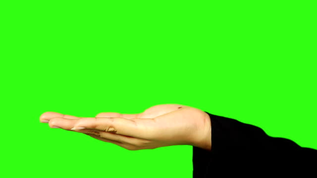 woman hand presenting with green screen background - palm of hand stock videos & royalty-free footage