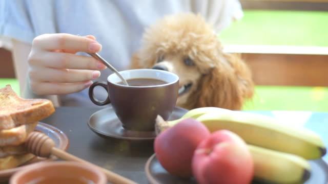 Woman having morning coffee on terrace. video