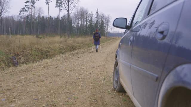 donna escursionista andare a piedi - dorso umano video stock e b–roll