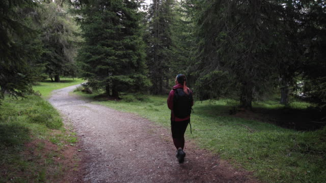 Woman hiking alone in the forest of the Dolomites