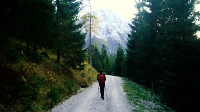 オーストリアのアルプスのハイキングの女性 - 自然旅行点の映像素材/bロール
