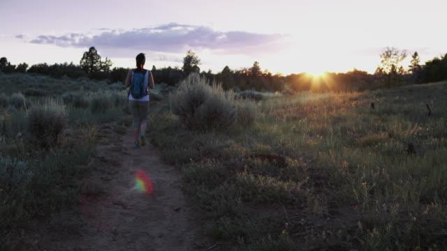 frau, wandern im zion national park bei sonnenuntergang - freizeitaktivität im freien stock-videos und b-roll-filmmaterial