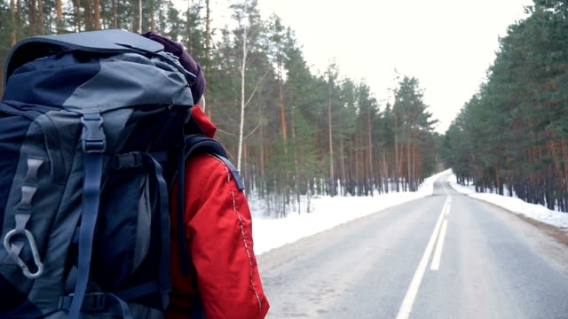 Woman hiking with a backpack in beautiful winter forest. Steadicam shot. video